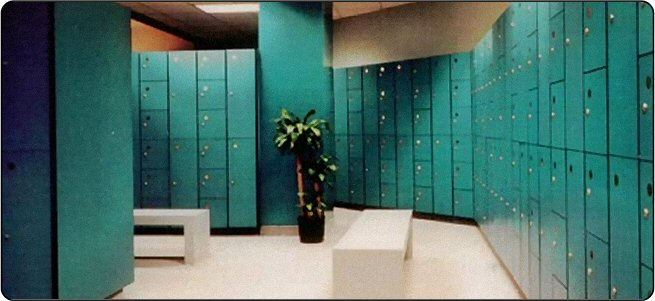 lockers industrial lockers solid plastic partitions toilet partitions stainless steel lockers - Employee Lockers